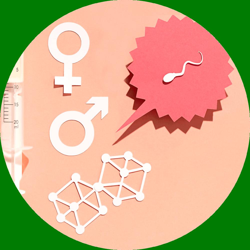 Sexualität: Basis-Seminare für Fachpersonen